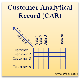 [Customer analytical record]